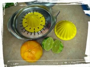 Still Life in Citrus