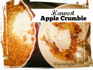 Low-sugar and high fibre, but tasty as all get out, this Healthy Harvest Apple Crumble works on multiple (yummy) levels!