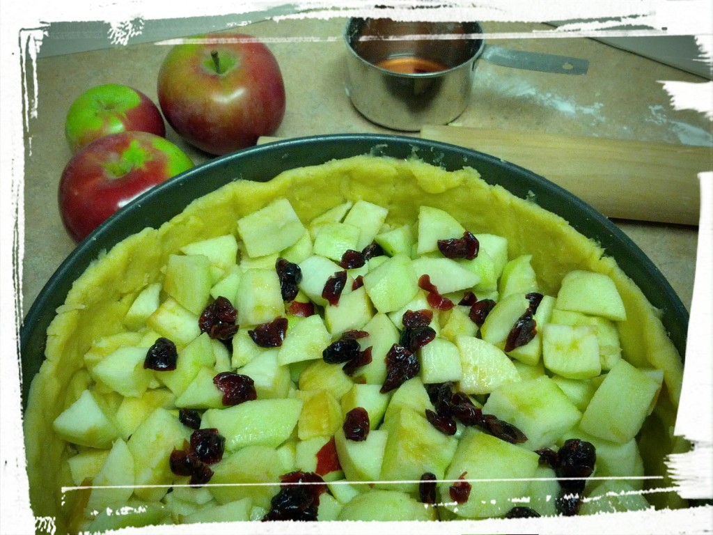 Apples and rummy cranberries. Yum!