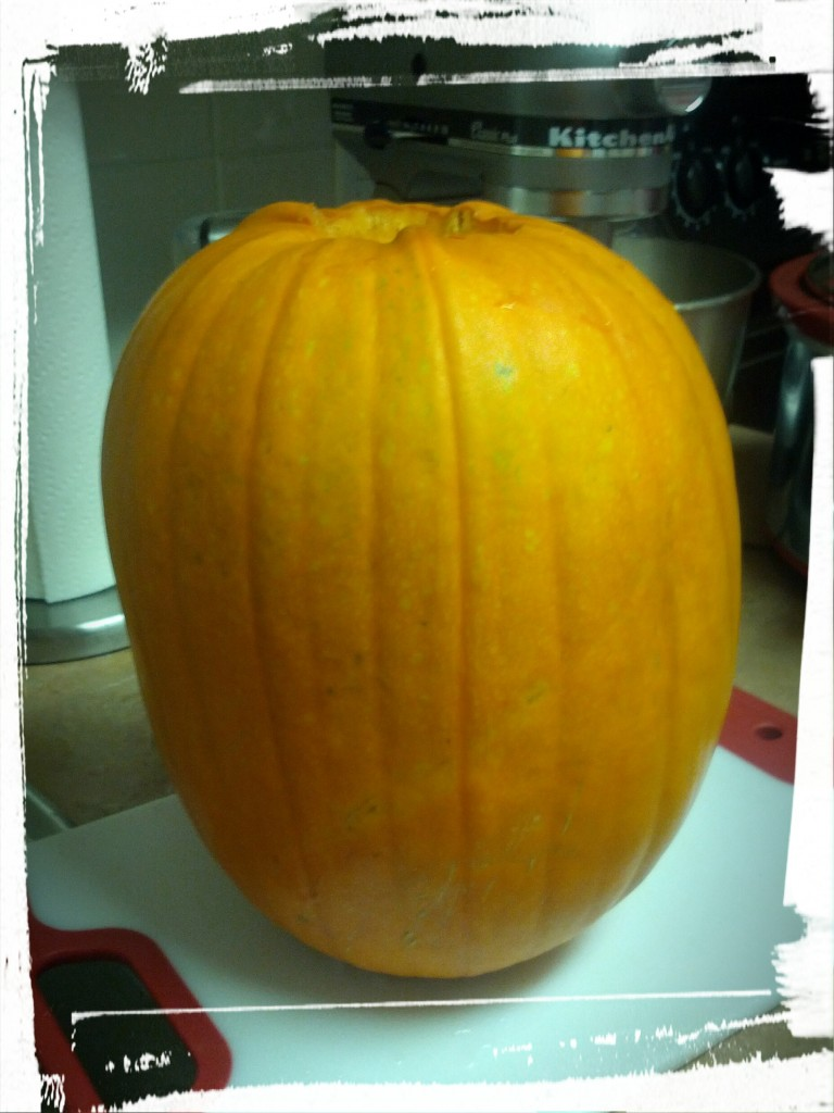 The pumpkin. I've heard that sugar pumpkins are good, but I just picked up one that wasn't expensive and looked cute. Meh. Good enough!
