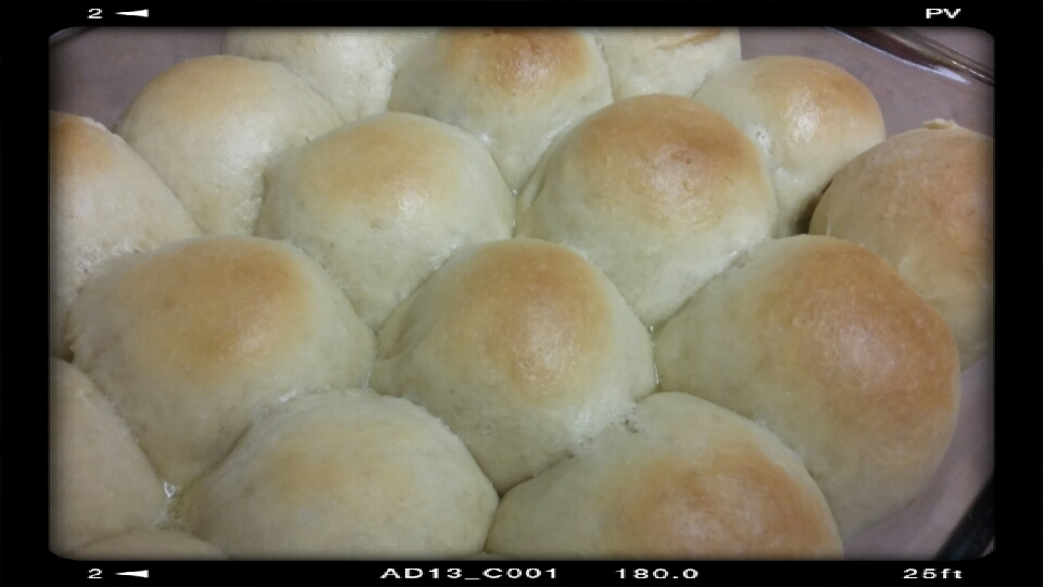Ooh, a whole tray of buns! I wonder how long this will last me....